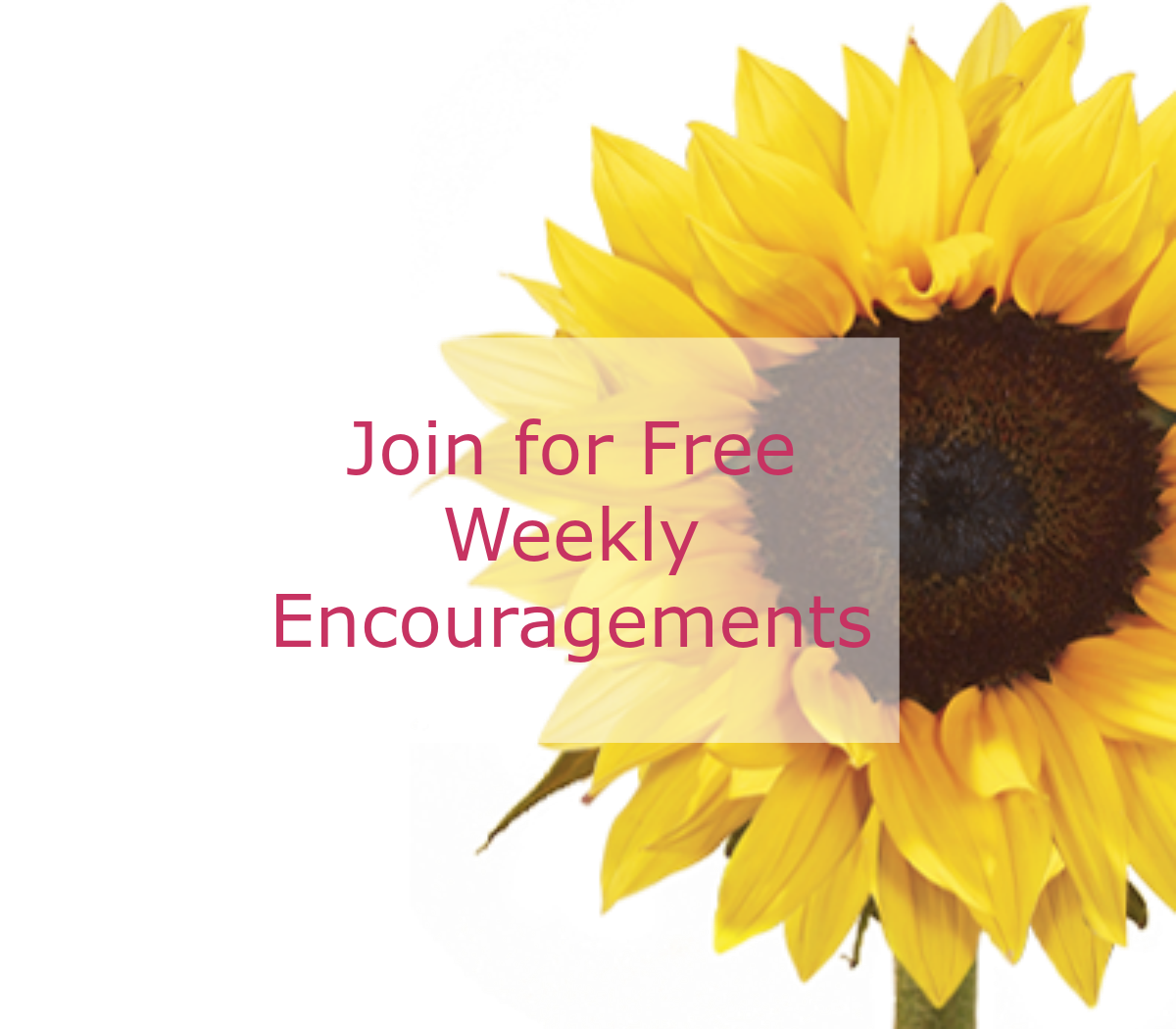 weekly-encouragements