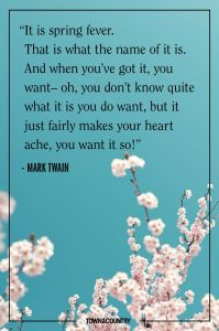 spring Mark Twain